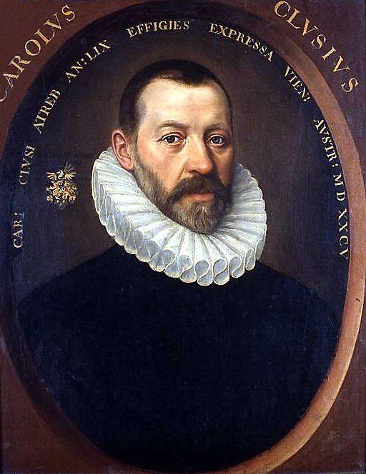 Istorija lala Karol Klusijus
