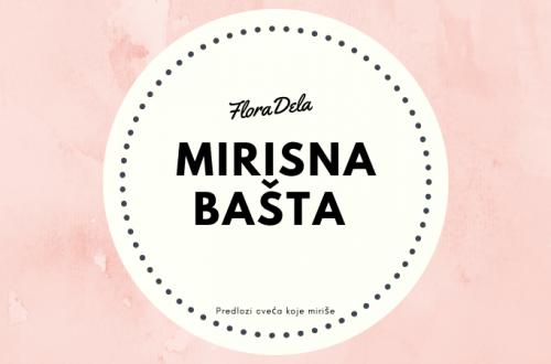 mirisna-basta
